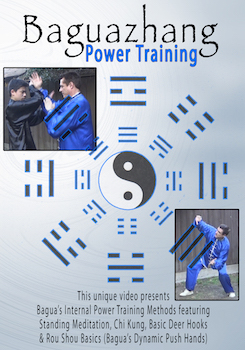 Bagua Power Train
